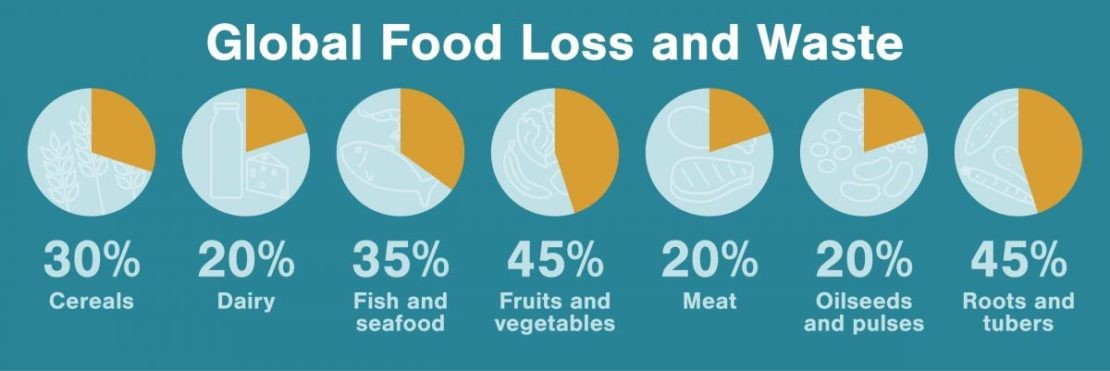 Fish and seafood loss and waste is shockingly high at over a third of all fish and seafood caught or farmed. Illustration by Mark Garrison, data from the FAO