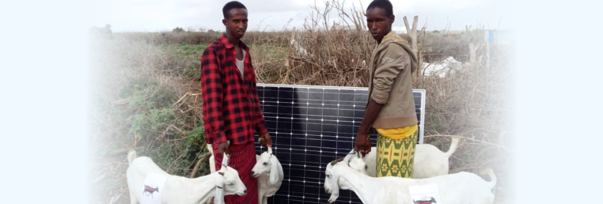 two man and solar panel